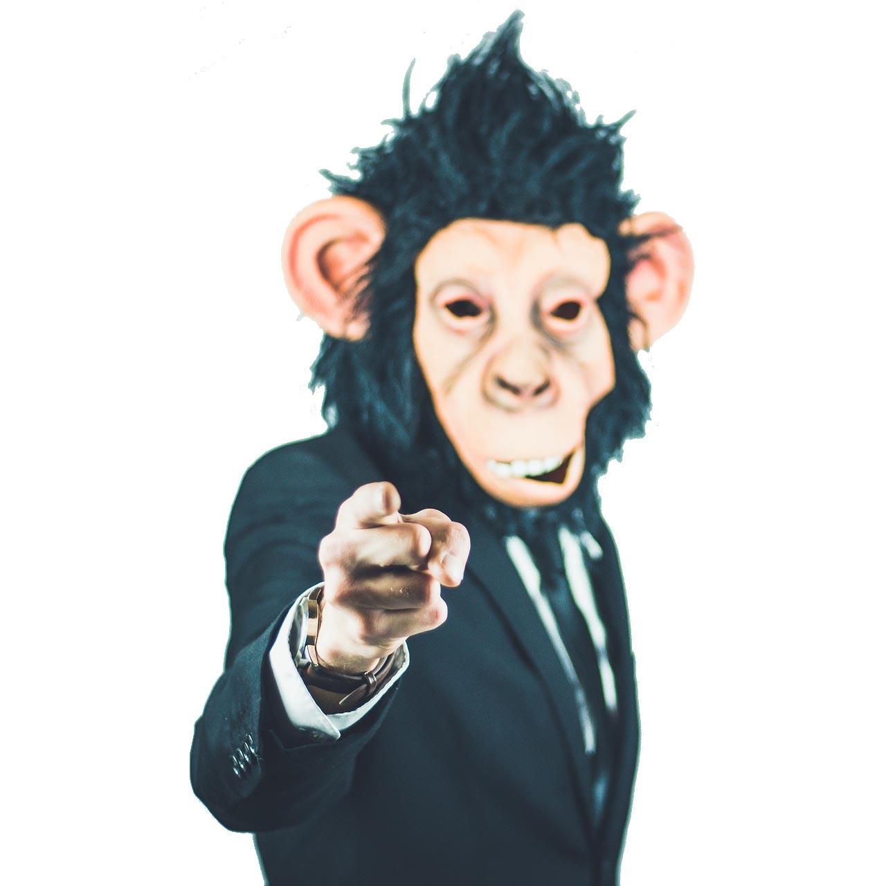 scimmia_contorno_bastascimmie